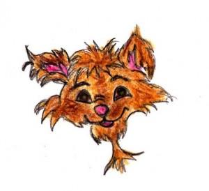 cachorro-Copy