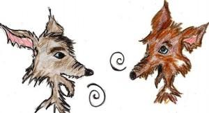 coyotes habla con tu comp 001 (Copy)
