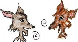 coyotes-habla-reducido